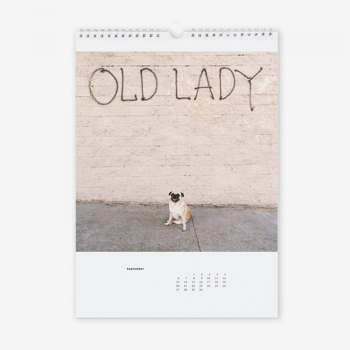 "edition ij ""Möpse"" Kalender 2021"