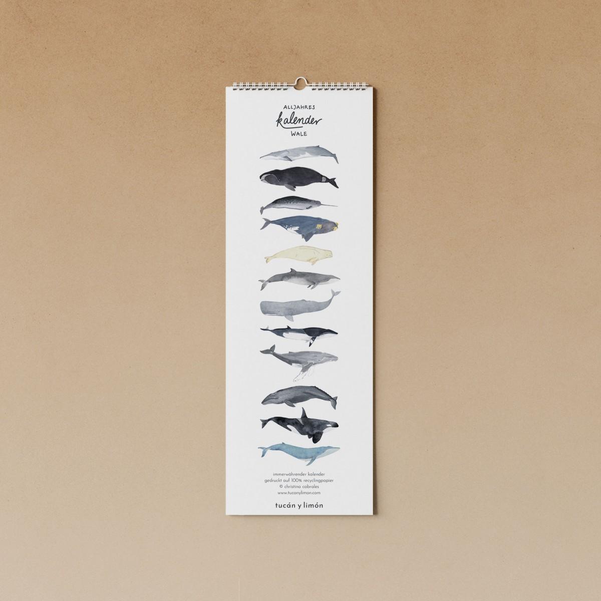 tucán y limón – Geburtstagskalender Wale / Aquarell / 100% Recyclingpapier / A4 halb