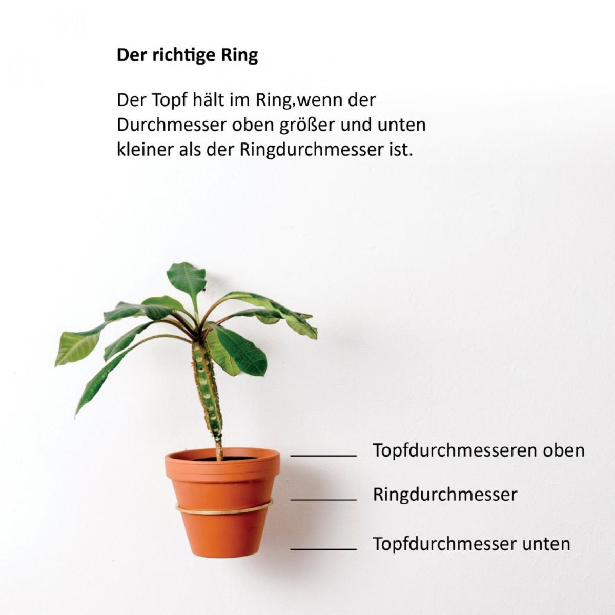 PLANTY Ring schwarz mit den Ausführungen S, M, L