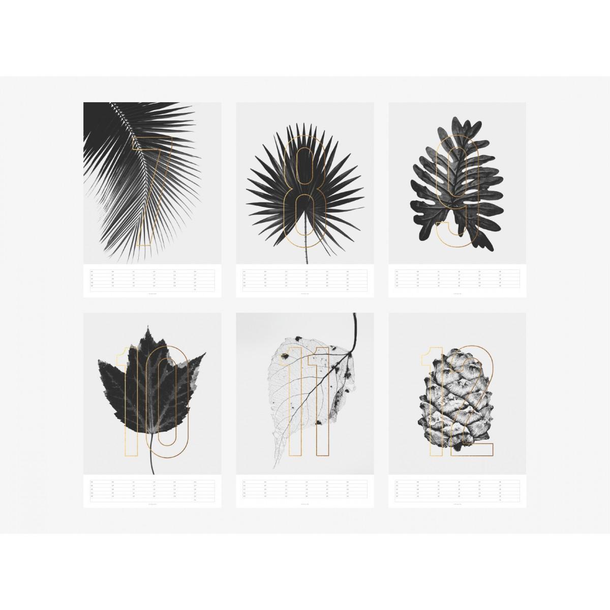 typealive / Wandkalender / Plants