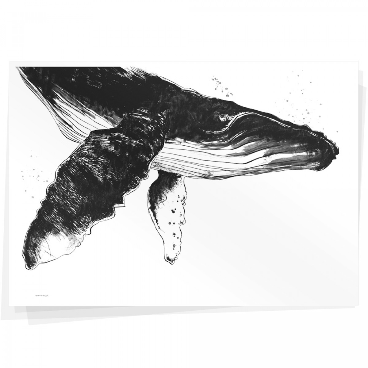 Wolfgang Philippi WAL PLAKAT 100x70 cm