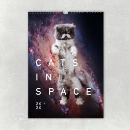 edition ij CATS IN SPACE Kalender 2020