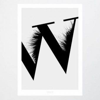 typealive / ABC Flying Letters - W