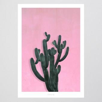 typealive / Kaktus No. 2
