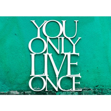 You Only Live Once, 56x42cm