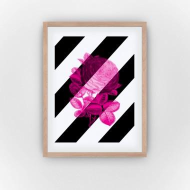 Pinq! (Fine Art Bureau)