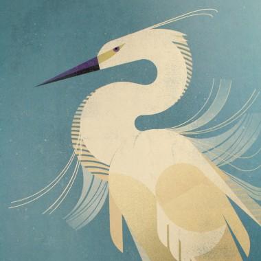KLEINWAREN / VON LAUFENBERG Set 8 (Eiche) / Little Egret + Magnetische Posterleiste 50 cm