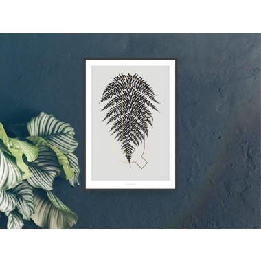 typealive / ABC Plants - Q