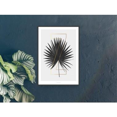 typealive / ABC Plants - Z