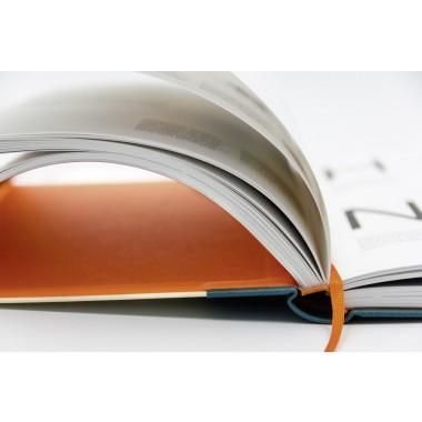 Antonia M. Cornelius Buchstaben im Kopf Was Kreative über das Lesen wissen sollten, um Leselust zu gestalten