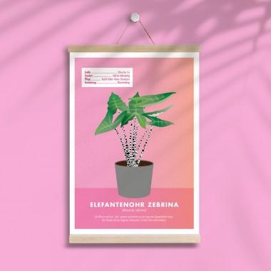 """Hey Urban Monkey - A4 Poster - """"Elefantenohr Zebrina"""""""