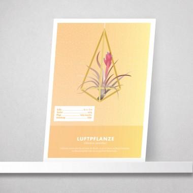 "Hey Urban Monkey - A4 Poster - ""Luftpflanze"""