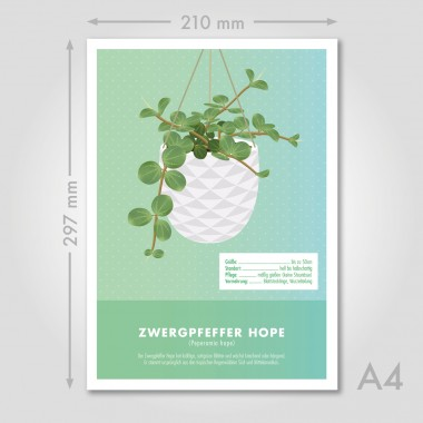 "Hey Urban Monkey - A4 Poster - ""Zwergpfeffer hope"""