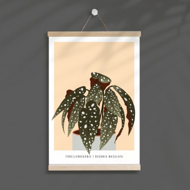 "Hey Urban Monkey - A4 Poster - ""Forellenbegonie"""