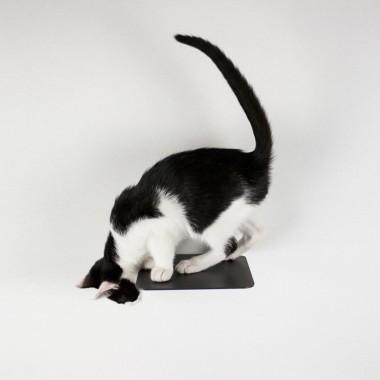 STEPS - Katzen Kletterstufen (3er-Set) von LucyBalu