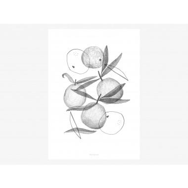 typealive / Print / Clementines