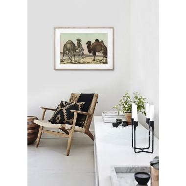 JOE MANIA / Vintage Artprint Poster / Schubert -Wiederkäuer 18