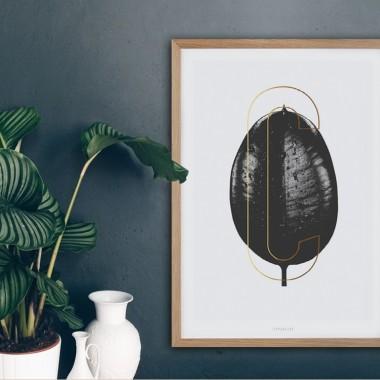 typealive / ABC Plants - C