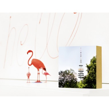 "München im Quadrat - ""Olympiaturm"""