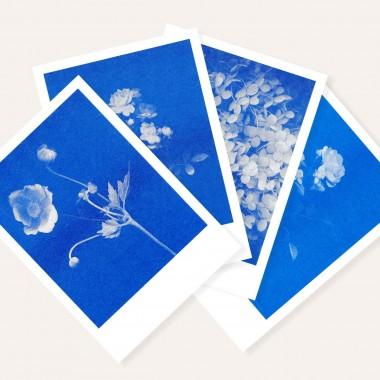 Risographie Postkarten – WUNDERTÜTE FLORAL  – HERR & FRAU RIO