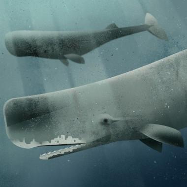 KLEINWAREN / VON LAUFENBERG Set / Sperm Whale + Posterleiste Esche 70 cm