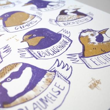 KLEINWAREN / VON LAUFENBERG Set / Heimische Vögel Poster + Posterleiste Eiche A3