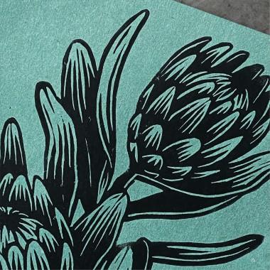 Juliana Fischer - Protea - Linoldruck, blaugrün, DIN A4