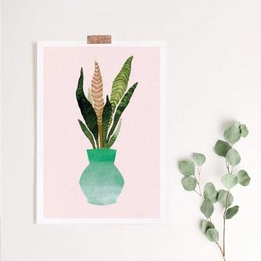 Paperlandscape | Kunstdruck | Zimmerpflanze | Sansevieria | verschiedene Farben