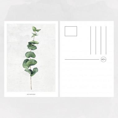 designfeder | Postkarte Pflanze