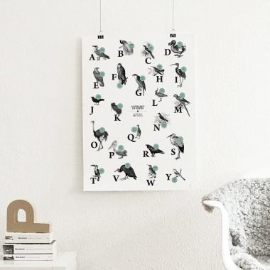 Poster, ABC der Vögel / alphabet of birds in Deutsch/Englisch, DIN A1