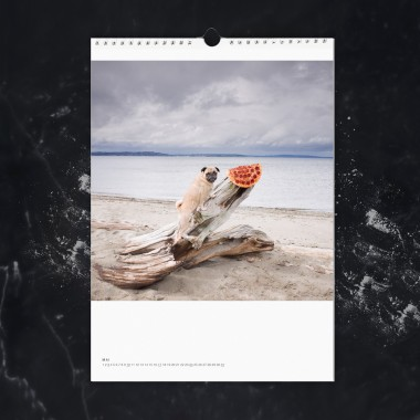 edition ij PIZZA IN THE WILD Kalender 2020