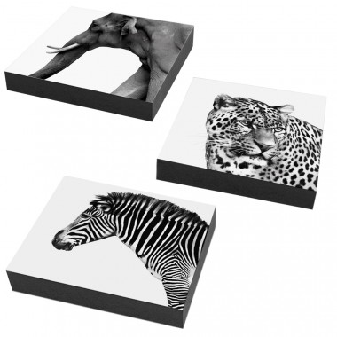 COGNOSCO Wandbild/ Holzblock 3er Set Tiere