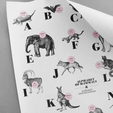 Poster, ABC der Säugetiere / alphabet of mammals in Deutsch/Englisch, DIN A1