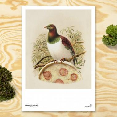 Chiara Tempel – Paradiesvögel #1 – Margheritataube – Poster A3 (297x420mm)