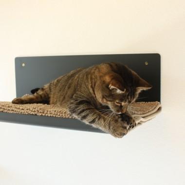 Design Sebastian Frank - PET BOARD STAIGHT - Katzenmöbel aus Metall