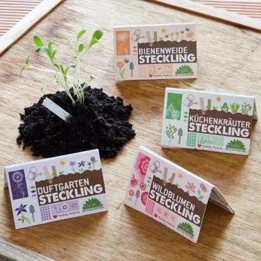 DieStadtgärtner Steckling | Der Blumenstrauß für die Hosentasche