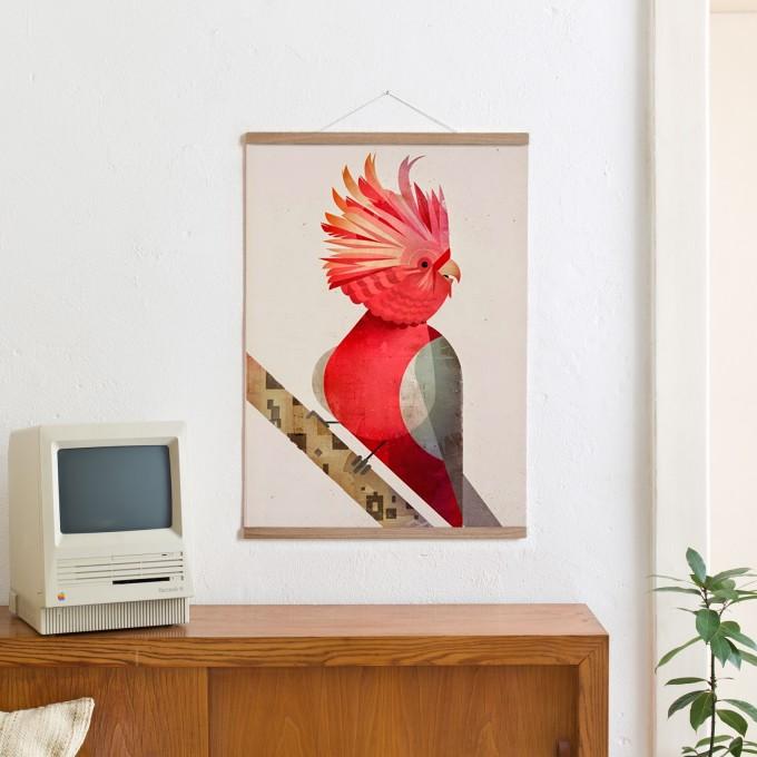 KLEINWAREN / VON LAUFENBERG Set / Galah Cockatoo + Magnetische Posterleiste Eiche 50 cm