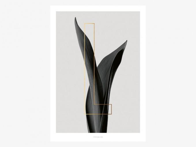 typealive / ABC Plants - L