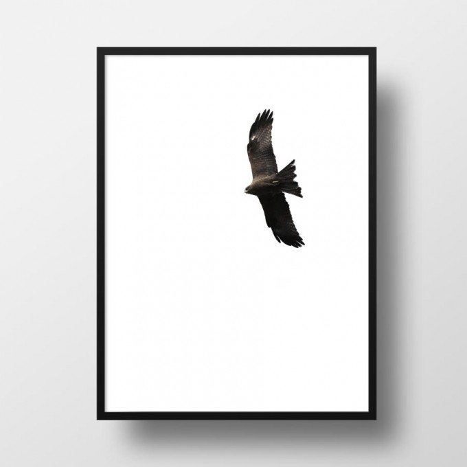 "Amy & Kurt Berlin A4 Artprint ""Bussard"""