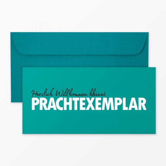 Typop 2 Teiliges Set Design Babykarte Willkommen Prachtexemplar