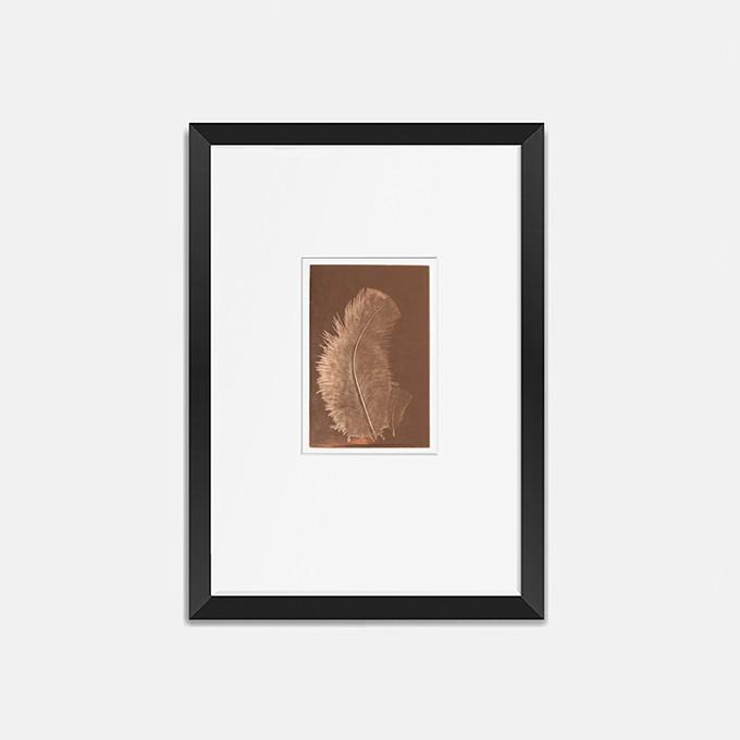Federbild auf kupfer 30x40 cm von Christina Pauls
