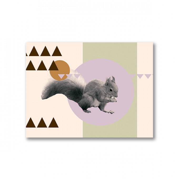 """ZEITLOOPS """"Eichhörnchen"""", Fineartprint, 45x60cm"""