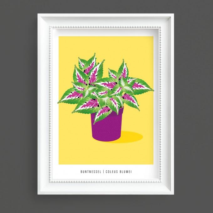 "Hey Urban Monkey - A4 Poster - ""Buntnessel"""