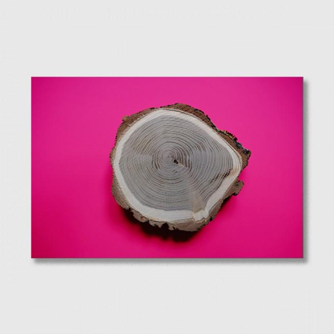 """ZEITLOOPS """"Jahresringe, pink"""", Fineartprint 40x60 cm"""