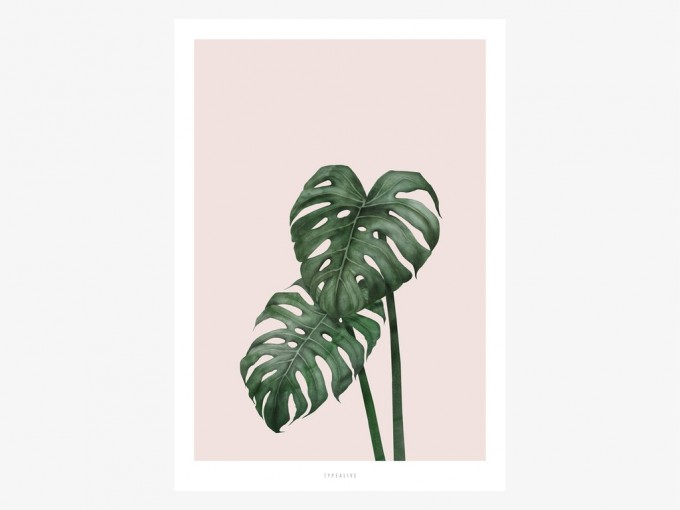 typealive / Tropical No. 9