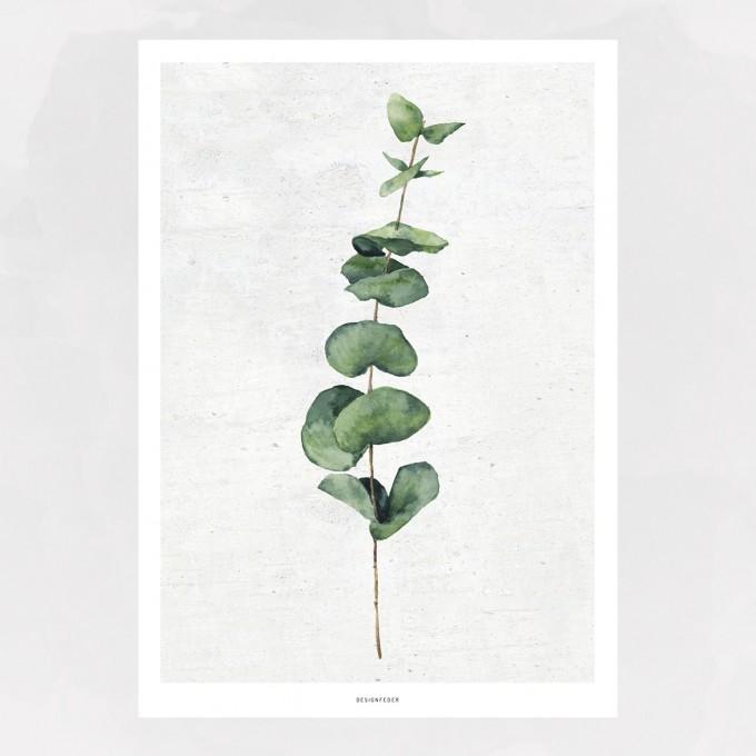 designfeder | Poster Pflanze No.1