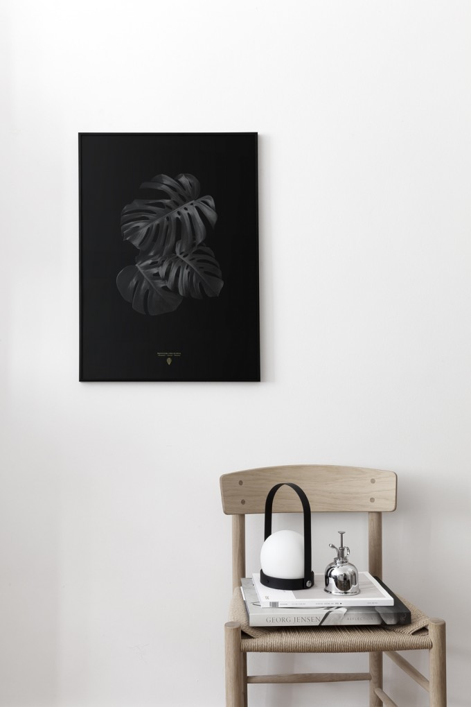 Coco Lapine Design Monstera Deliciosa