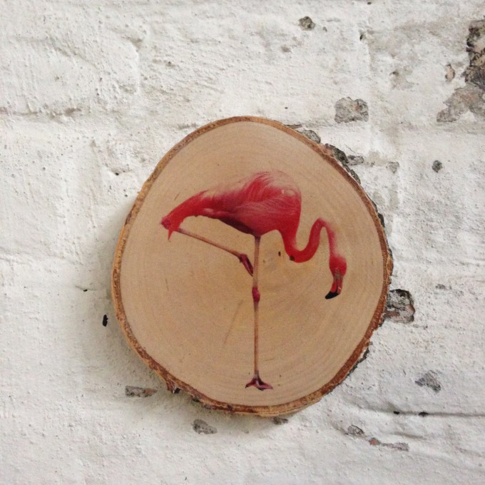 Madeva Holzliebe Flamingo Birkenastscheibe