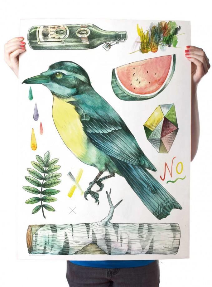 Martin Krusche – Poster »Kolibri« 50x70cm, Illustration