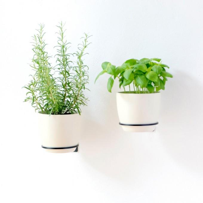 Planty Rings Wallplanter | universelle Wandhalterung für Pflanzen im Übertopf | Blumenampel für die Wand im minimalistischen Design | Urban Jungle | Vertikaler Garten | Farbe schwarz | in 3 Größen ehältlich